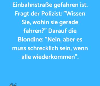Eine Blondine wird…
