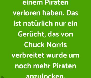 Chuch Norris soll…