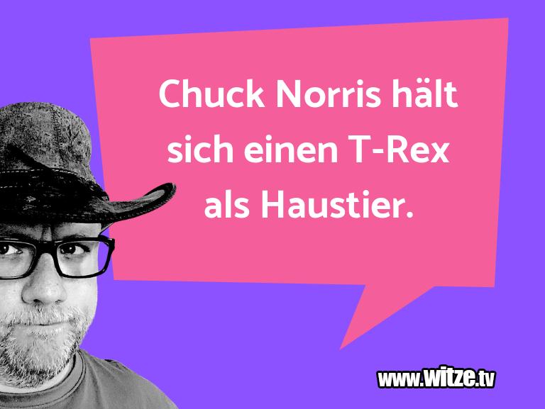 Geistesblitzzu…ChuckNorrishältsicheinenT RexalsHaustier.…