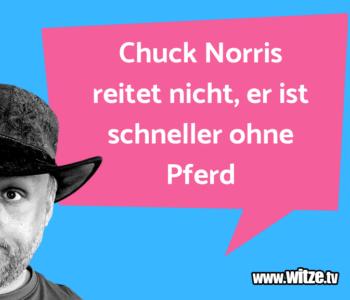 Chuck Norris reitet…