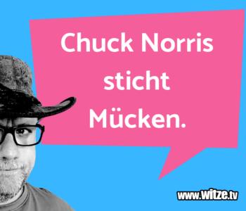Chuck Norris sticht…