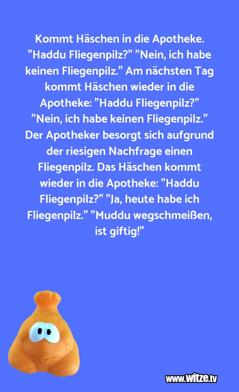 """Geisteshaltung oder Schabernack… Kommt Häschen in die Apotheke. """"Haddu Fliegenpilz?…"""