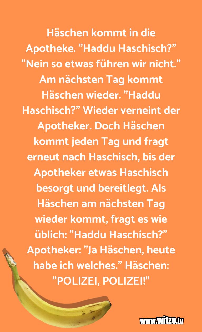 """Geistesblitz zu… Häschen kommt in die Apotheke. """"Haddu Haschisch?"""" …"""