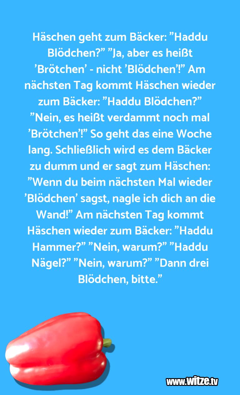 """Geisteshaltung oder Schabernack… Häschen geht zum Bäcker: """"Haddu Blödchen?"""" """"Ja, ab…"""