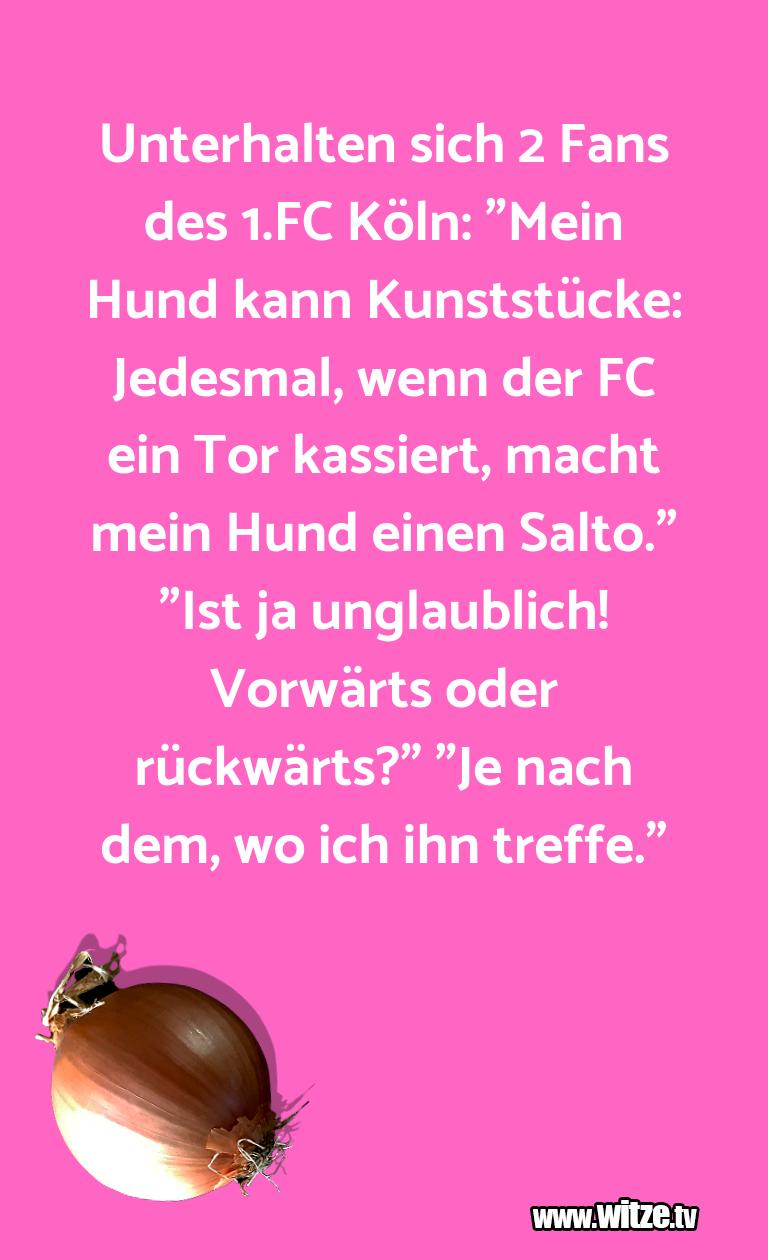 """WaseinJux...UnterhaltensichFansdes.FCKöln:""""MeinHund…"""
