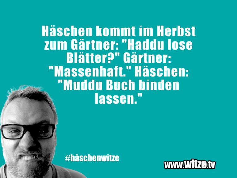 """Hammer Joke... Häschen kommt im Herbst zum Gärtner: """"Haddu lose B…"""