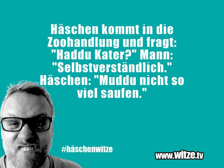 """Ein Wortwitz über… Häschen kommt in die Zoohandlung und fragt: """"Haddu…"""