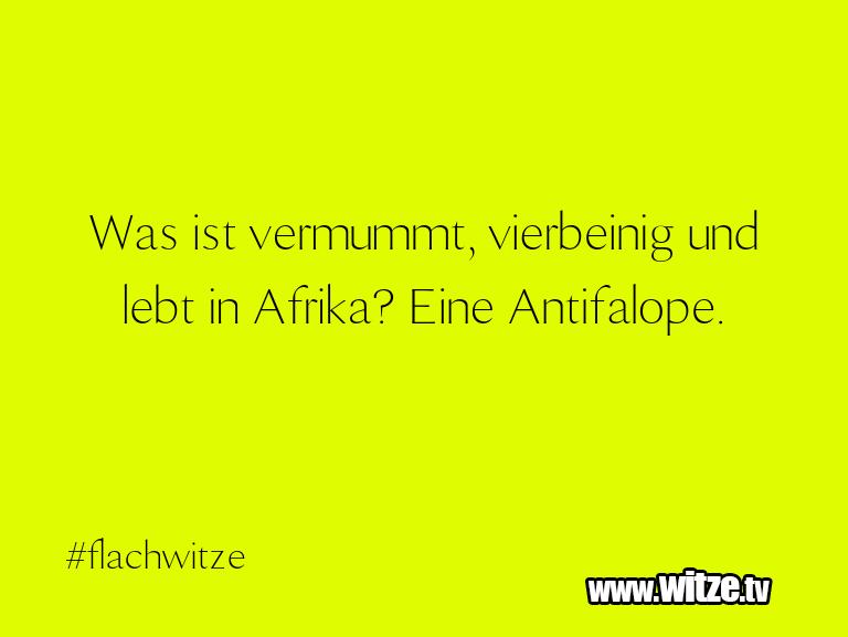 Nur Unsinn… Was ist vermummt, vierbeinig und lebt in Afrika? E…