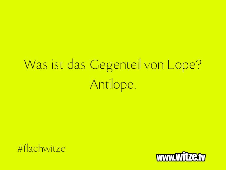 Muttis Witze… Was ist das Gegenteil von Lope? Antilope.…