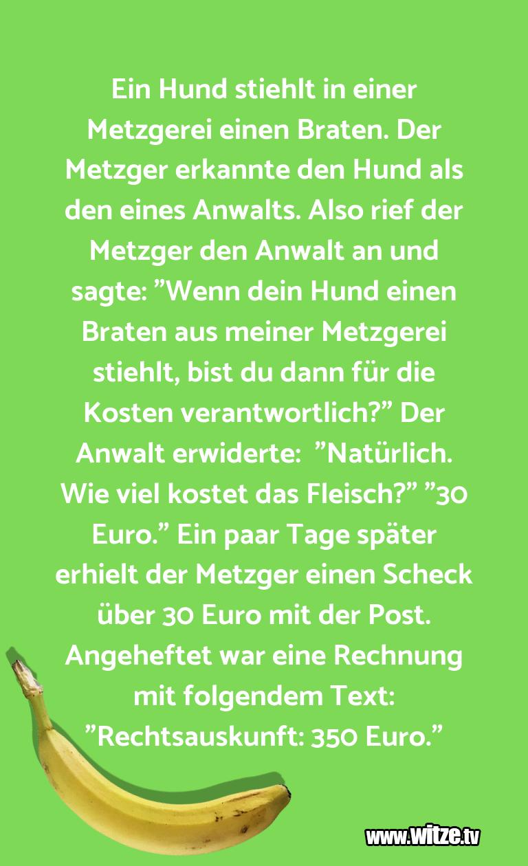 MuttisWitze… EinHundstiehltineine…