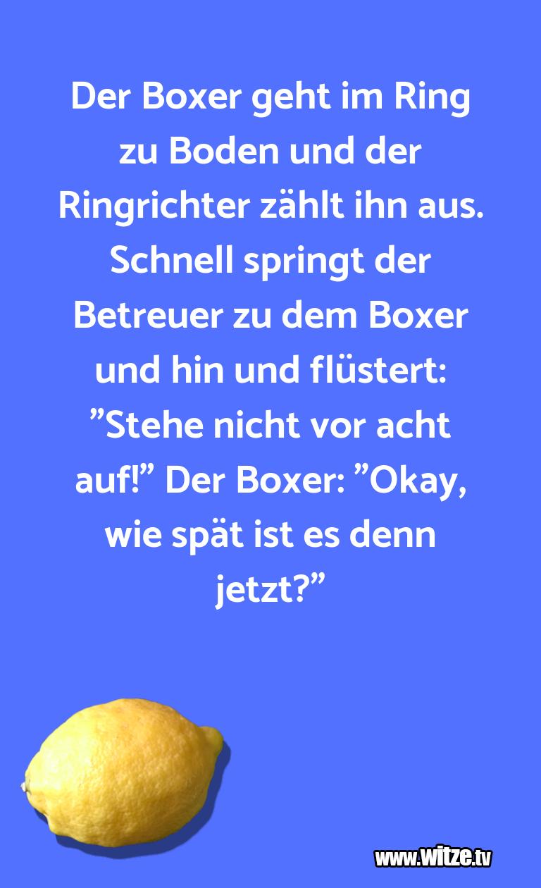 Lustige Anspielung… Der Boxer geht im Ring zu Boden und der Ringrichte…