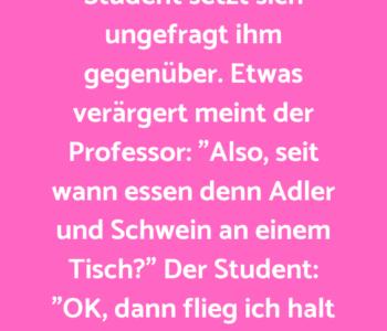 Der Professor sitzt…