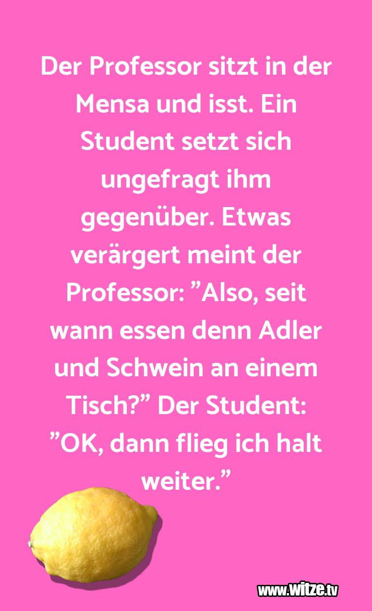 DasistHumor… DerProfessorsitztind…