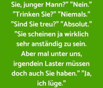 Herr Schmidt befragt…