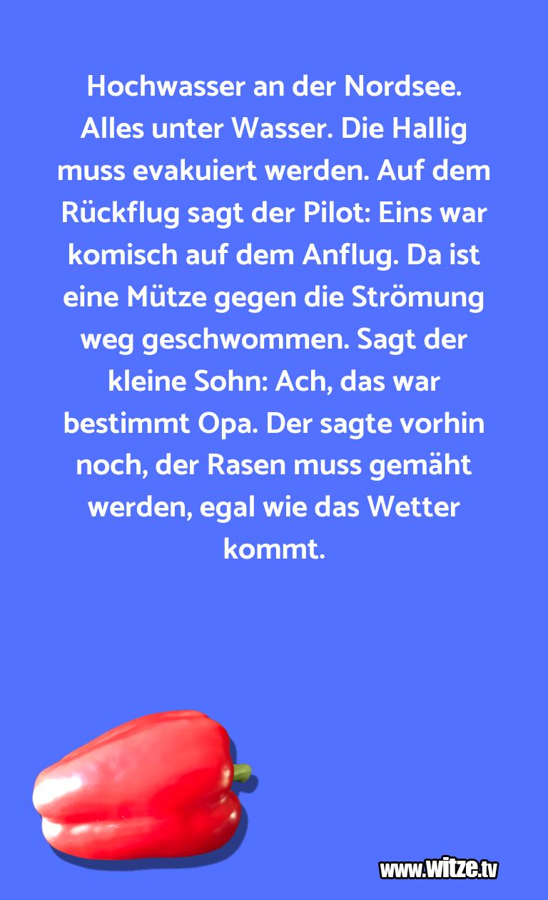 KrönungderWitze… HochwasseranderNordse…