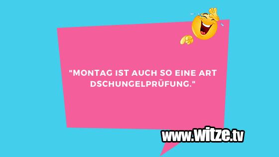 """Geistesblitzzu… """"Montagistauchsoeine…"""