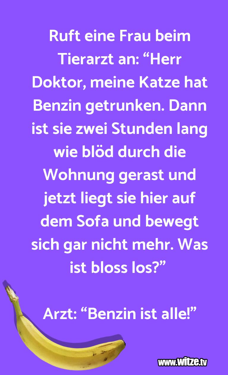 """Ein Wortwitz über… Ruft eine Frau beim Tierarzt an: """"Herr Doktor, mei…"""