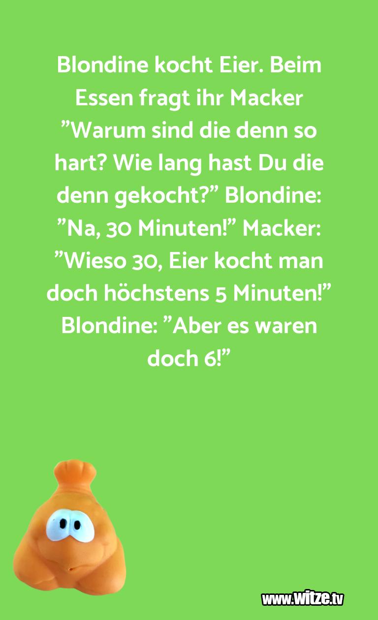 """Clown zum Frühstück gegessen… Blondine kocht Eier. Beim Essen fragt ihr Macker """"…"""