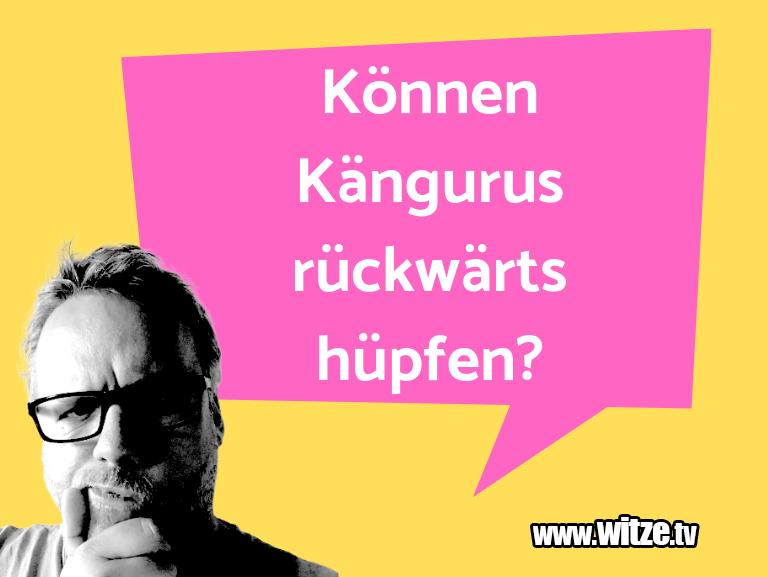 Clown Witze!... Können Kängurus rückwärts hüpfen?…