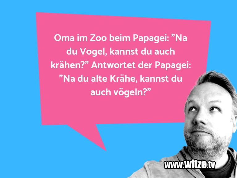 """Hammer Gag… Oma im Zoo beim Papagei: """"Na du Vogel, kannst du a…"""
