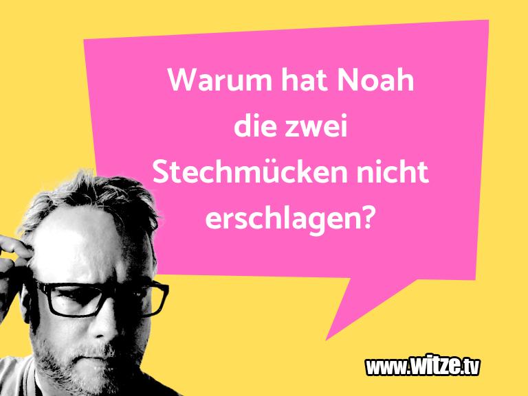 Kracher vom Schöpfer… Warum hat Noah die zwei Stechmücken nicht erschlag…