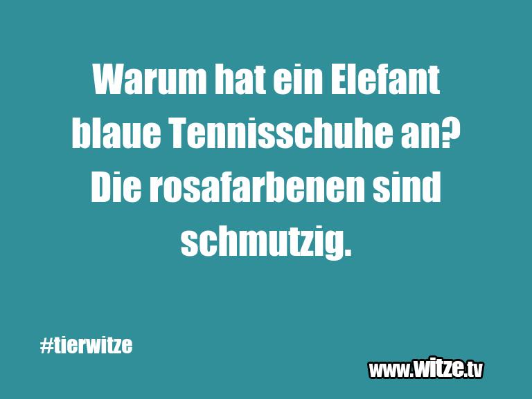 Was ein Jux... Warum hat ein Elefant blaue Tennisschuhe an? Die r…
