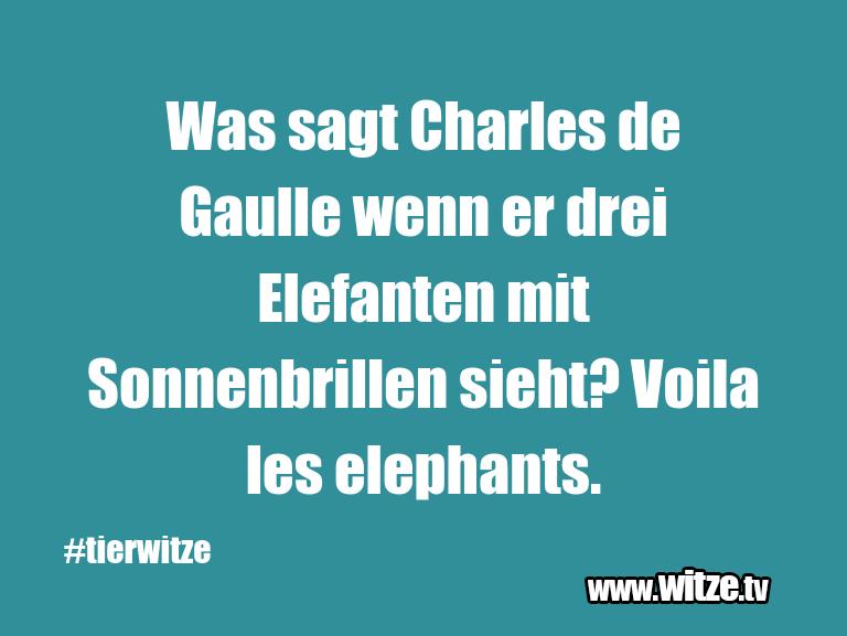 Leidenschaftlicher Humor... Was sagt Charles de Gaulle wenn er drei Elefanten …