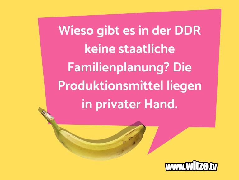 Geisteshaltung oder Schabernack… Wieso gibt es in der DDR keine staatliche Familien…