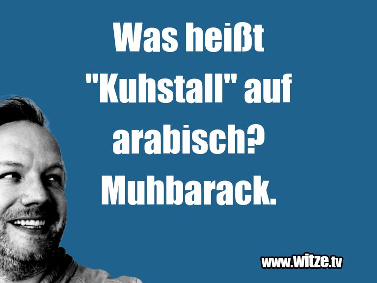 """Erfindergeist oder doch nur Scharbernack...Was heißt """"Kuhstall"""" auf arabisch? Muhbarack.…"""