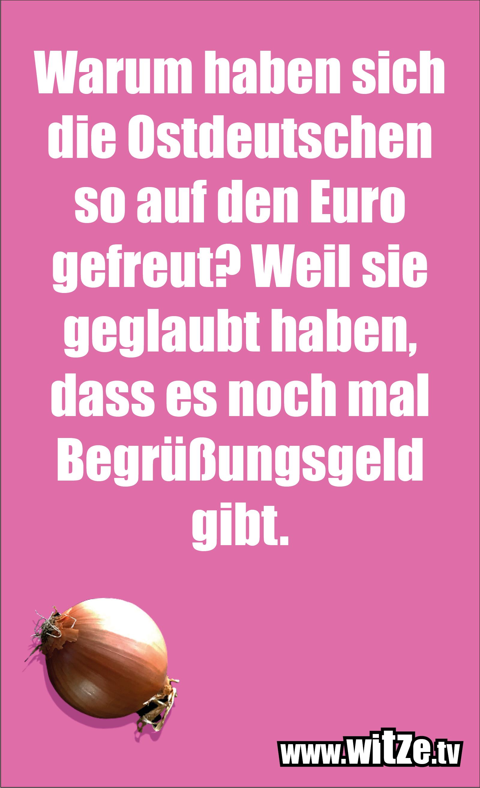 Warum haben sich die Ostdeutschen...
