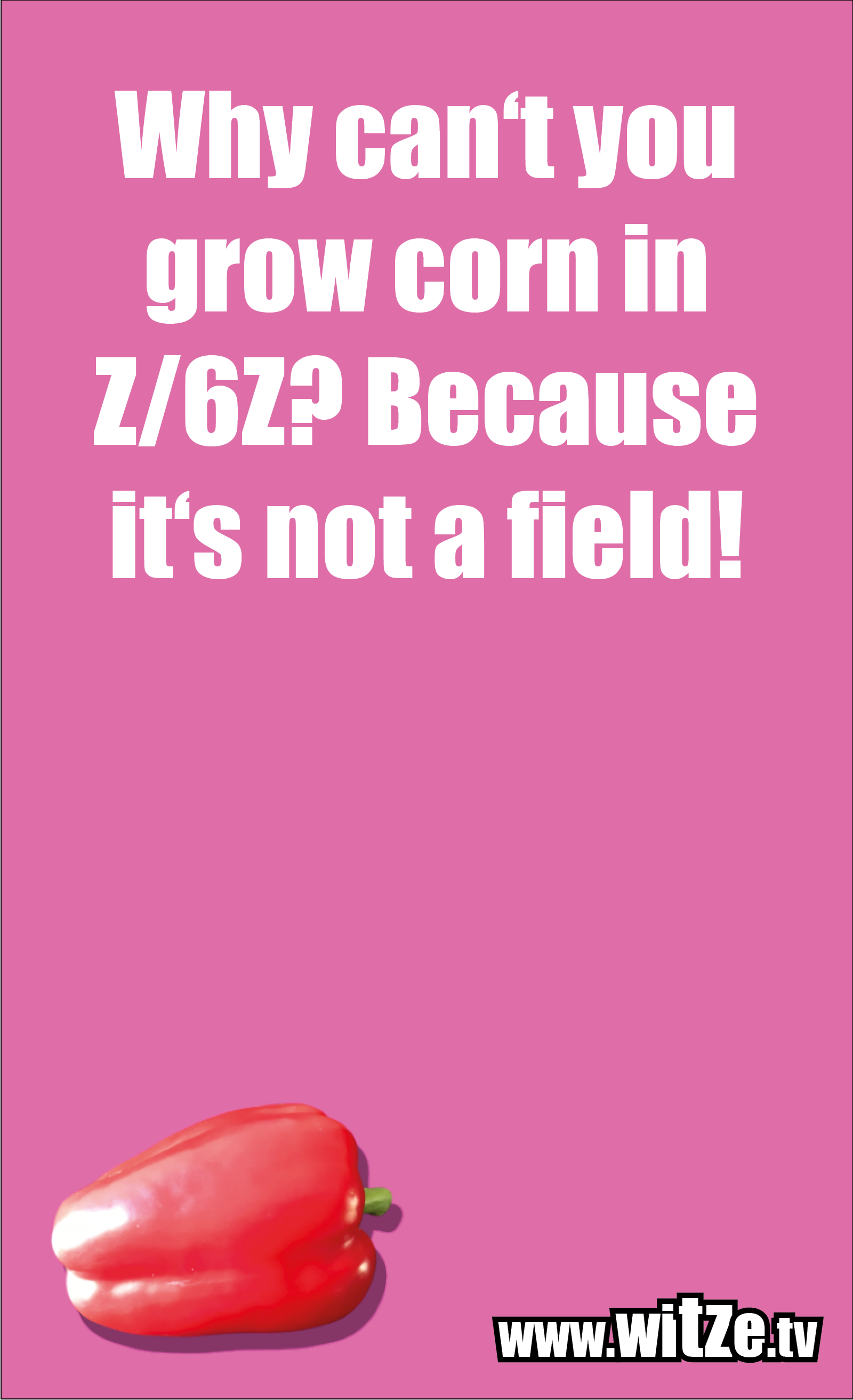 Math joke… Why can't you grow corn in Z/6Z? Because it's not a field!