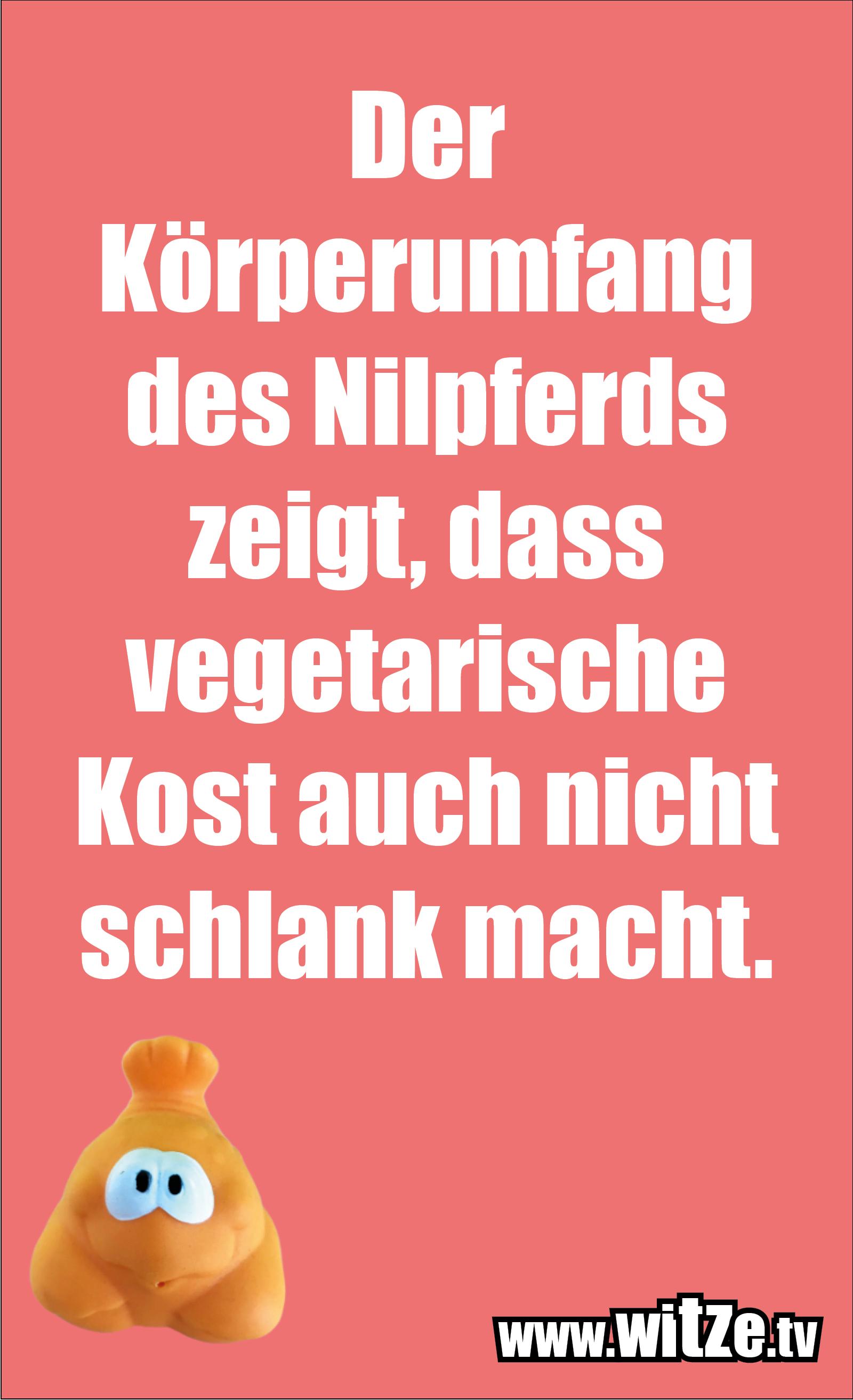 Sarkasmus Sprüche: Der Körperumfang des Nilpferds zeigt, dass vegetarische Kost auch nicht schlank macht.