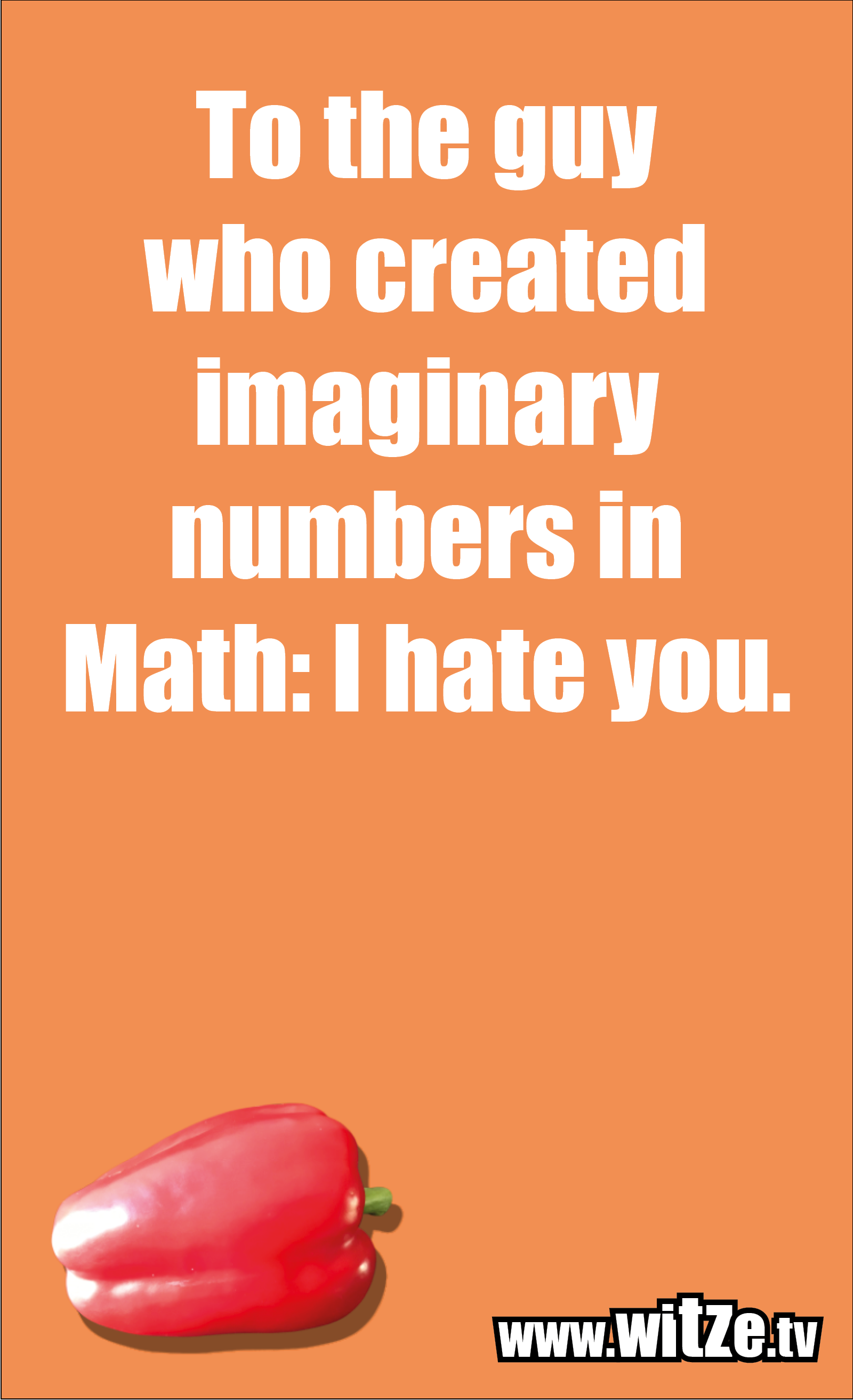 Funny sayings… To the guy who created imaginary numbers in Math: I hate you.